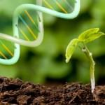 biotechnology21
