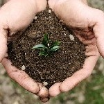 soil-re
